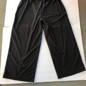 spanx Pants - Spanx Bod-a-Bling Cropped Pants Built in Liner L